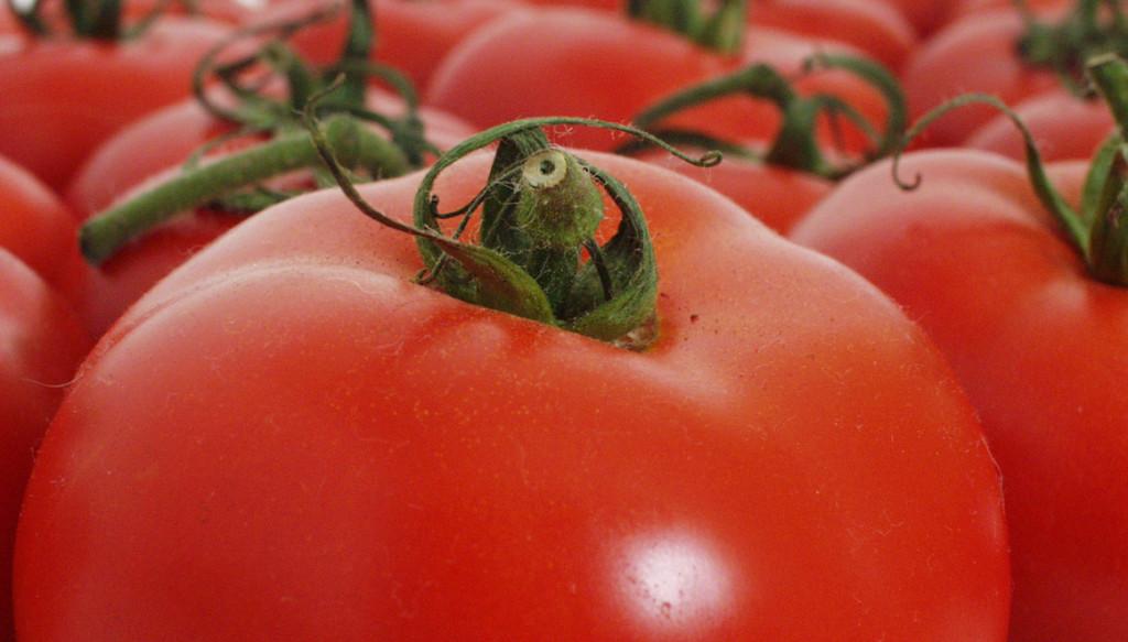 tomato-2-1533069-1278x1021